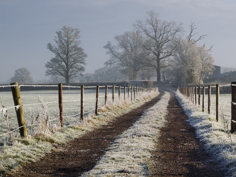 A Frosty Start by Helen Gibson, Second Section B