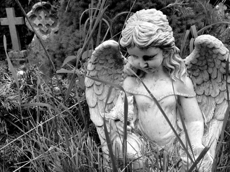 Angel by John Simpson Highly Commended Section B