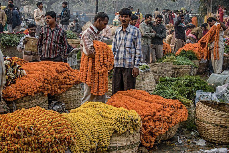 Delhi Flower Market by Derek Philpott First Section A