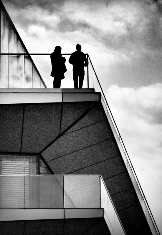 Meeting on the Roof by Carol Tritton, Section B Winner Comp 5 Monochrome Print 2015-16