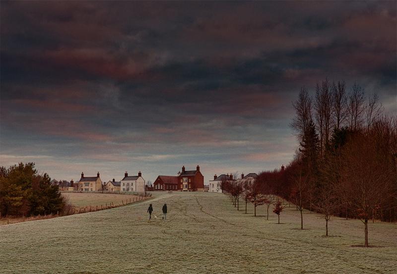 Morning Walk by Stephen Lee