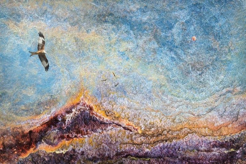 Soaring High by Stephen Jones