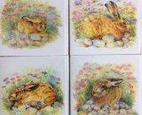 Hares on Chesil Beach (Blank inside)