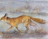 Feran - Running Fox