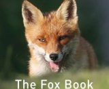 The Fox Book by Jane Russ