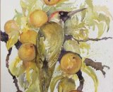 Wilona - Green Woodpecker on apple tree 36x27cm