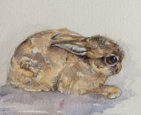 Eldred - brown hare leveret 28x20