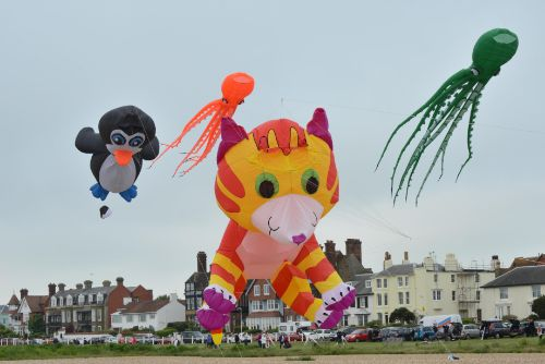 Kites on Walmer Green
