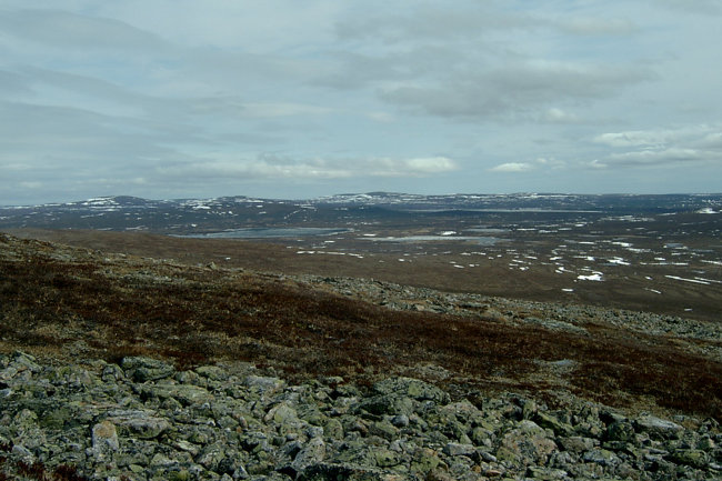 Tundra from fell-top