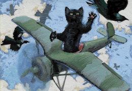 cat fight