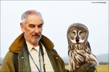 Great Grey Owl 6 with Falconer Andrew