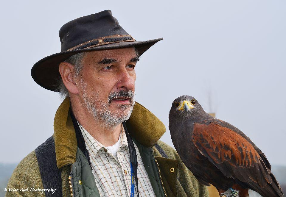Harris Hawk 2 with Falconer Andrew