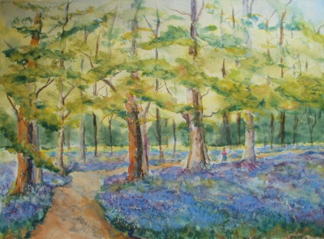 Bluebell Woods - Brian Blair