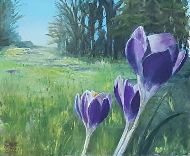 February Sunshine - Sue Hinton