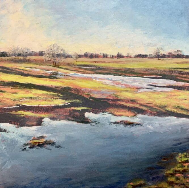 Flooding on the Common - Lauren Sapseid