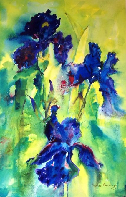 Fran Bunting - Irises