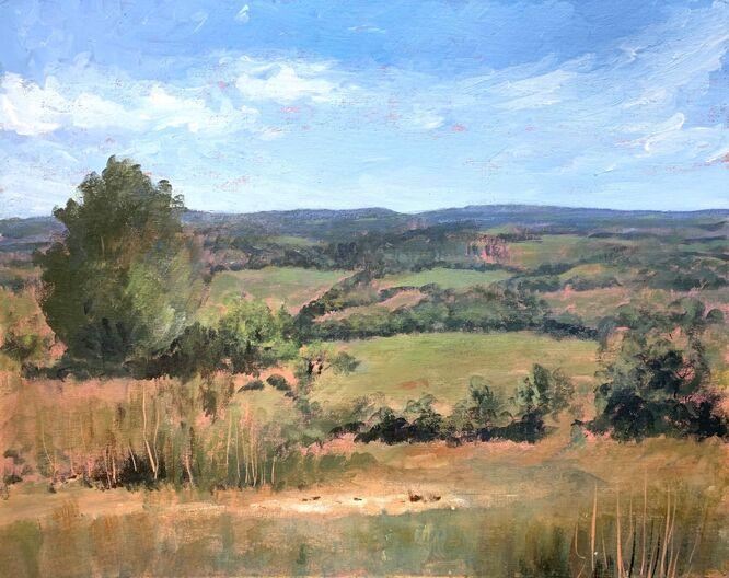 The Rolling Hills of Surrey - Lauren Sapseid
