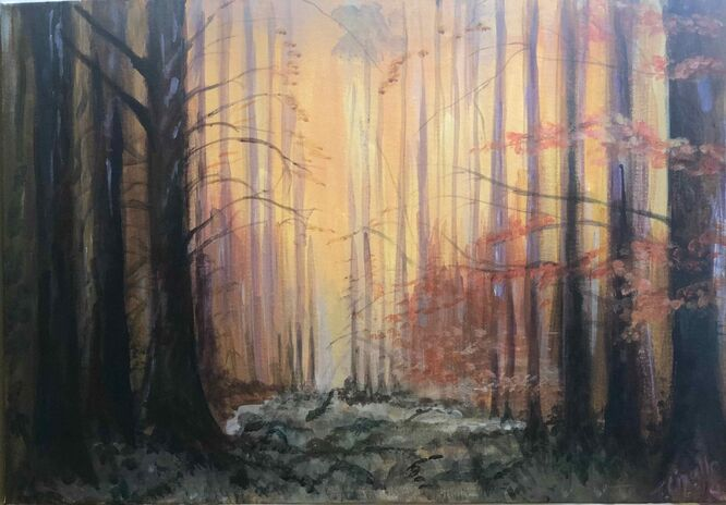 The Woods - Tracey Cipullo