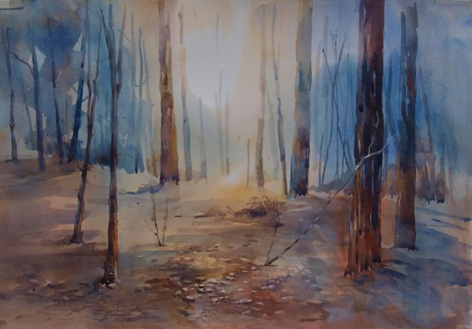 Liz Seward - Autumn Light
