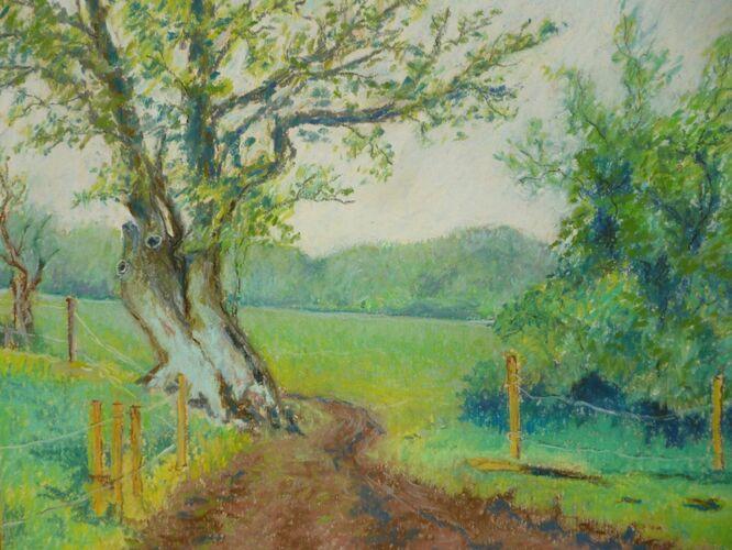 Dorset Spring - Ron Best