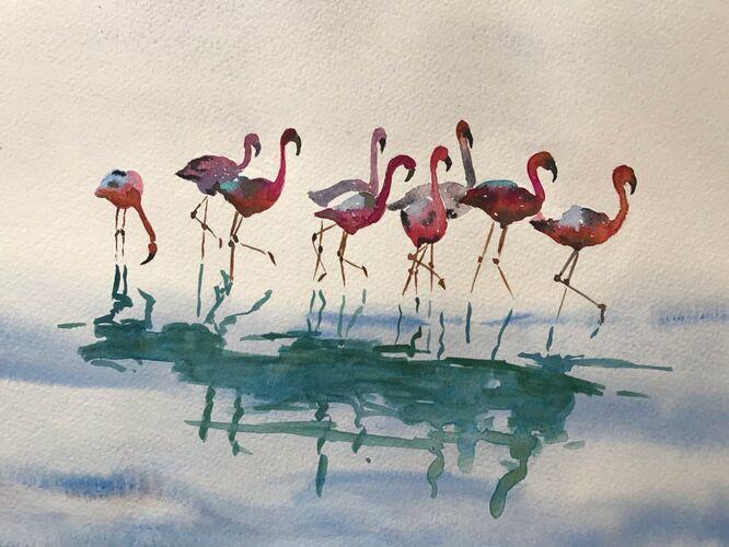 Pink Ladies - Elaine Balmer