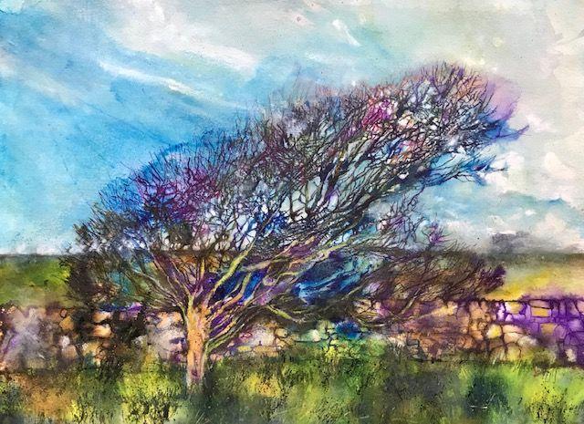 Spring 2019 - Louise Rowe - Blown