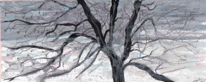 Winter Tree - Carla Scarano D'Antonio