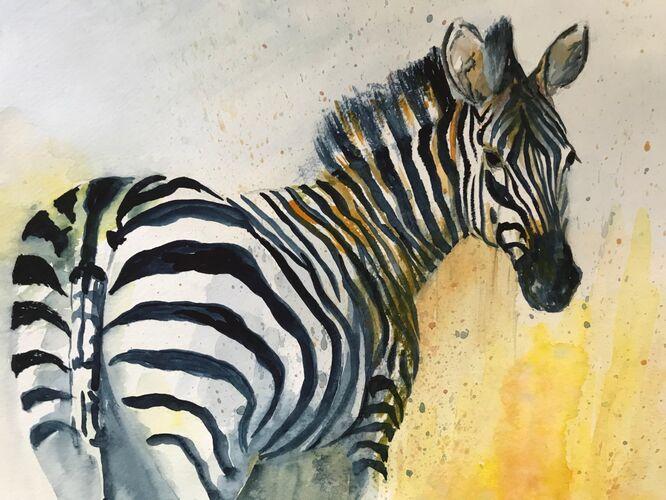 Zebra - Elaine Balmer