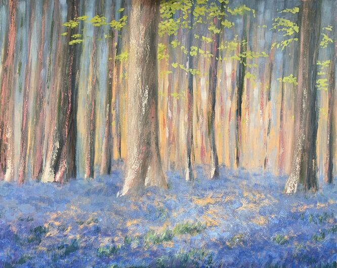 Blanket of Bluebells - Lauren Sapseid