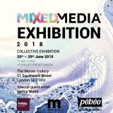 Pebeo Mixed-Media Exhibition
