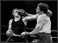 3 Sucker Punch by Alan Janaszek