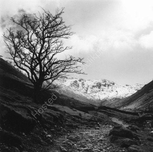 Lake District: Borrowdale