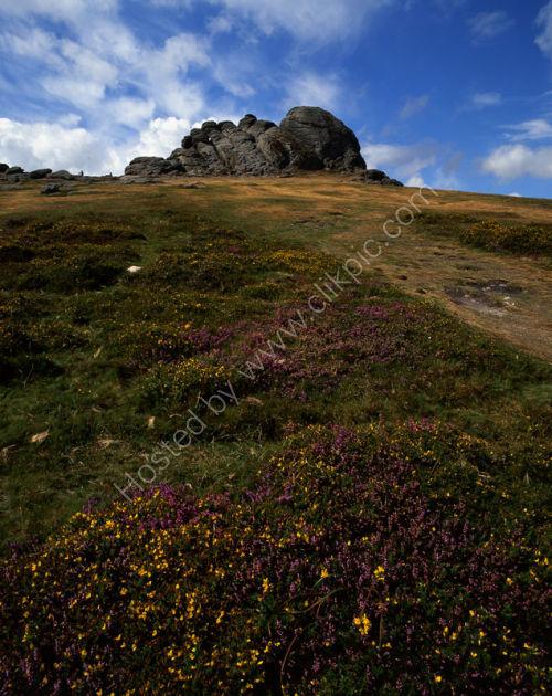 Dartmoor: Haytor
