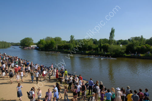 Thames - Rowing