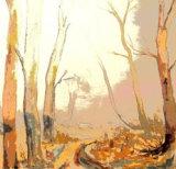 Celia Slack. the Woodland Path