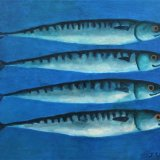 163-FOUR SMILING MACKEREL