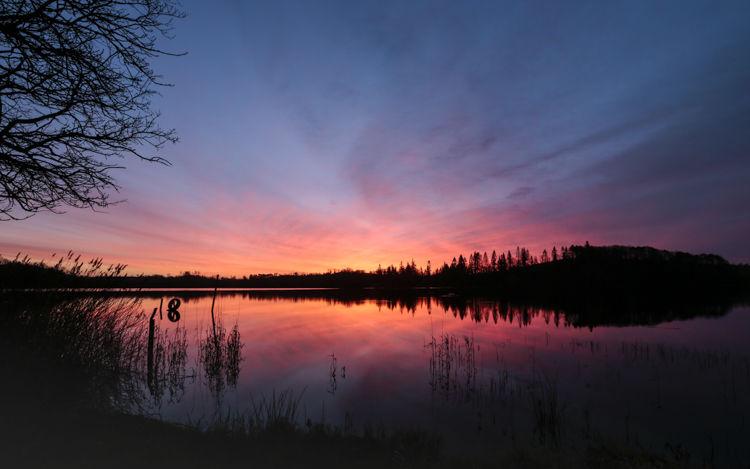 Annaghmakerrig Sunrise