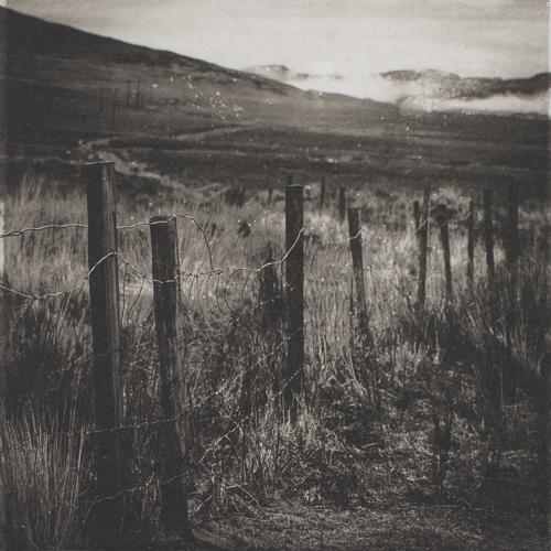 Fence II - Kerry - Polymer Photogravure Print