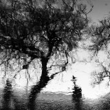 carrowbeg reflections