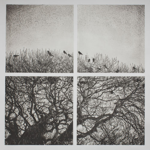 Easky Roost at Dusk - Polymer Photogravure Print