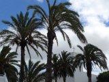 1 Lanzarote, Spain