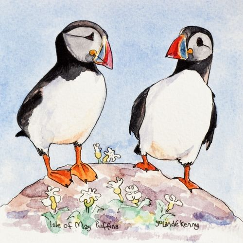 2 Isle of May Puffins ... £20