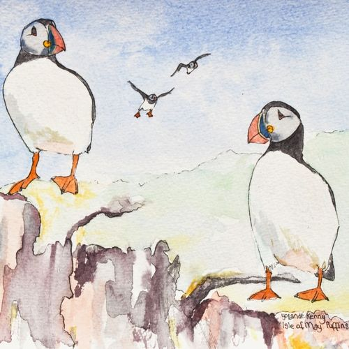 4 Isle of May puffins ... £20