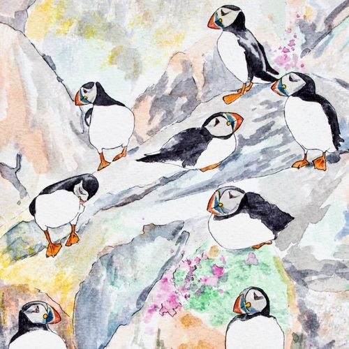 Print '8 Isle of May Puffins' with Display Easel... £20
