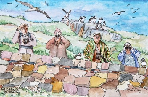 Bird Watching on The Isle of May ... £25