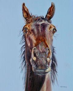Commission Stuart's Horse