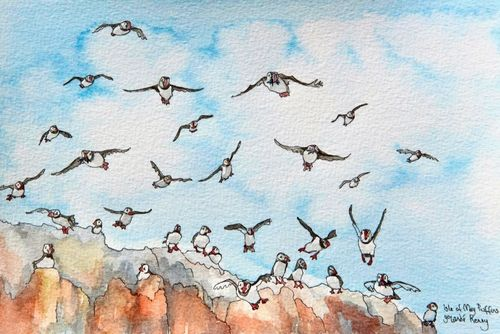 Print 'Flying Puffins on The Isle of May'... £25