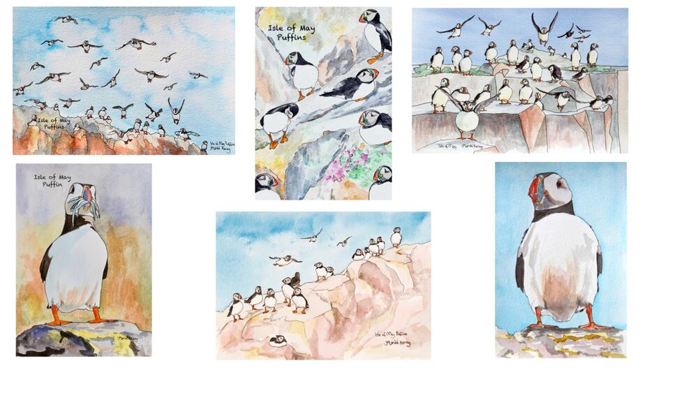 Puffins greeting Cards montage
