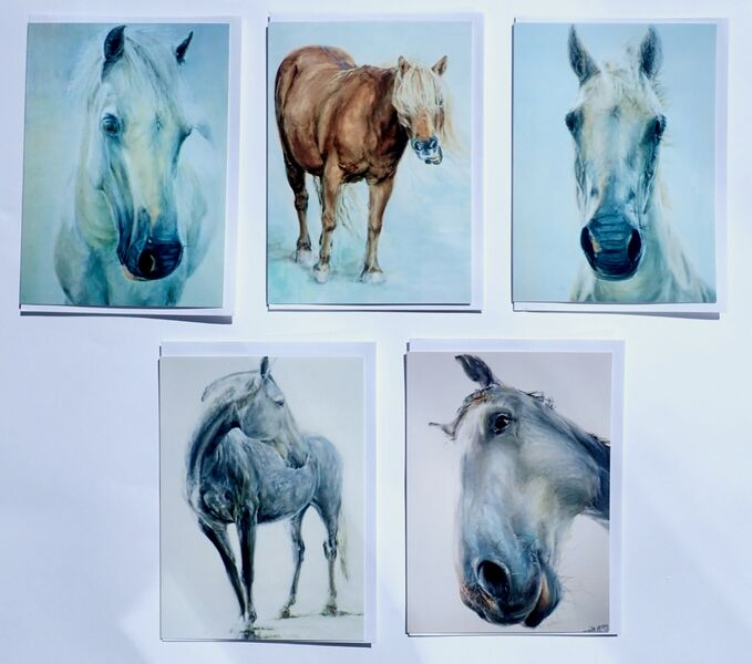 Set of 5 Large Horse Greeting Cards.. £12