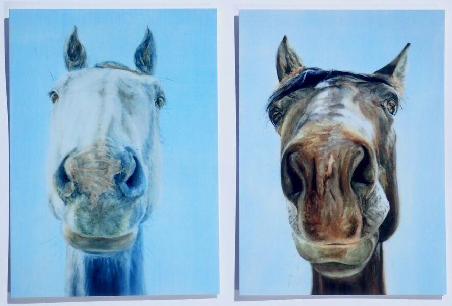 Set of 2 Large Horse Birthday Cards.. £5